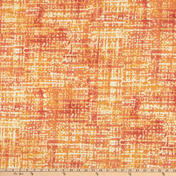 Swavelle Empower Outdoor Spice Fabric
