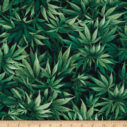 Timeless Treasures Stretch Jersey Knit Cannabis Green