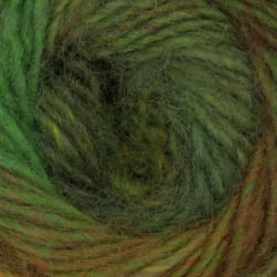 Lion Brand Amazing Yarn (202) Rainforest
