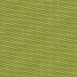 Richloom Solarium Outdoor Solid Kiwi Fabric