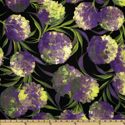 Glorious Garden Hydragea Black
