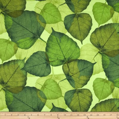 Timeless Treasures Poppies Large Leaf Green