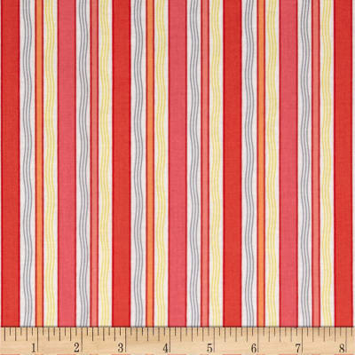 Gypsy Stripe Coral
