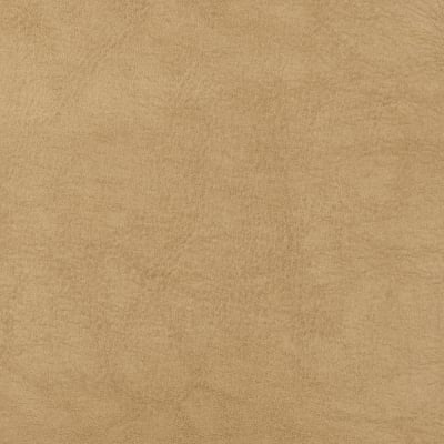 Swavelle/Mill Creek Faux Leather Thurston Prairie