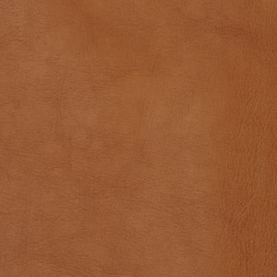 Swavelle/Mill Creek Faux Leather Thurston Copper