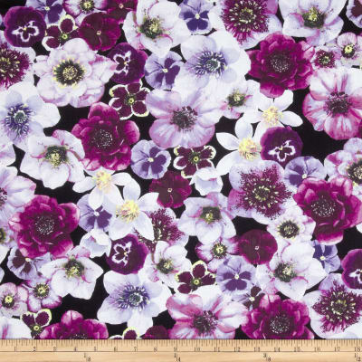 Kanvas Papillon Violette Black