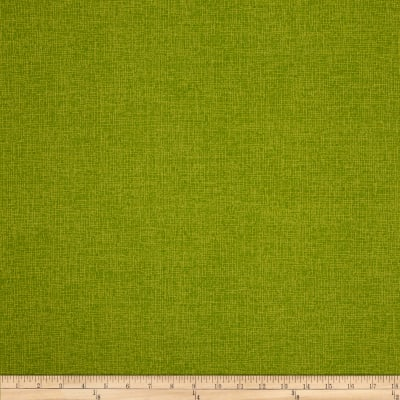 Bryant Indoor/Outdoor Phoenix Linen Kiwi