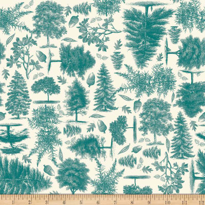 Riley Blake Trail Mix Nature Teal