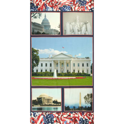 "American Spirit Digital Print Welcome To Washington 24"" Panel Multi"