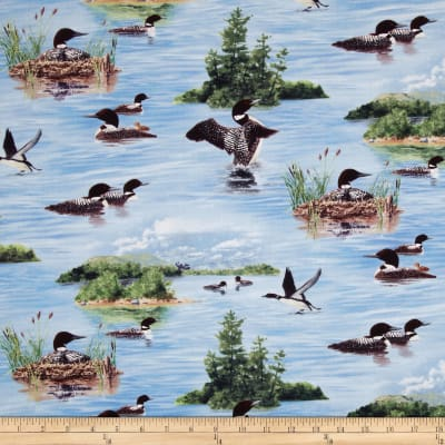North American Wildlife Loon Island Blue