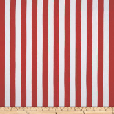 World Wide Striped Lines Cranberry