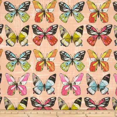 Michael Miller Flutter Fly Candy