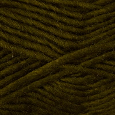 Bernat Sheep(ish) Yarn 00016 Olive(ish)