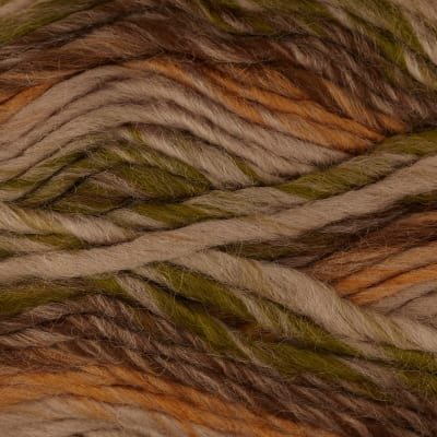 Bernat Sheep(ish) Stripes Yarn 70002 Earth(ish)