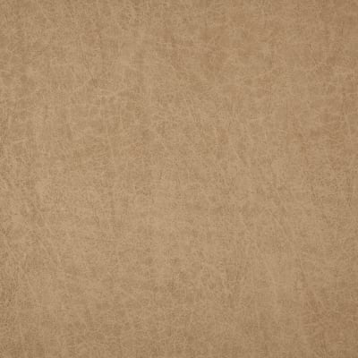 Swavelle/Mill Creek Turnbull Distressed Faux Leather Latte