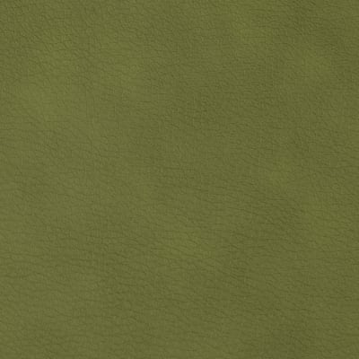 Regal Flannel Backed Vinyl Pecos Moss