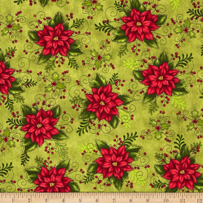 Do You See What I See Book Poinsettia Green