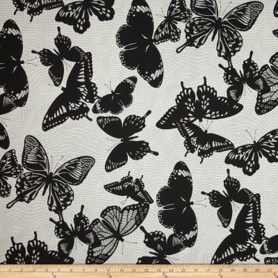 Black & White Butterflies Smoke