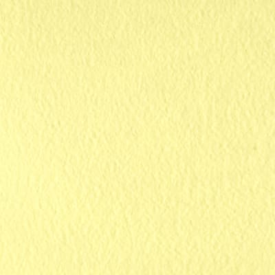 Apparel Fleece Solid Light Yellow