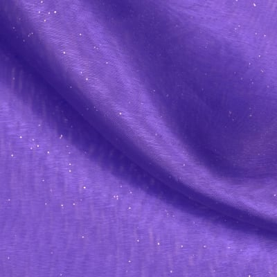Star Struck Embellished Organza Purple