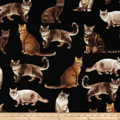 Timeless Treasures Cats Black