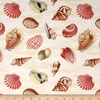 Seaside Wonders Seashells Cream