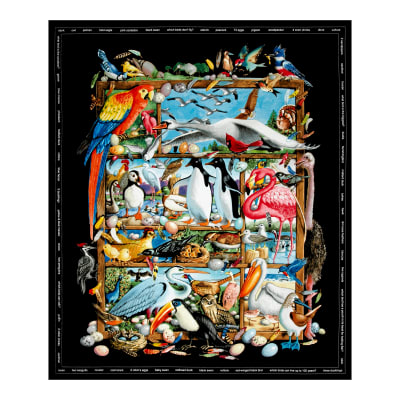 Birdwatching 35 In. Panel Black