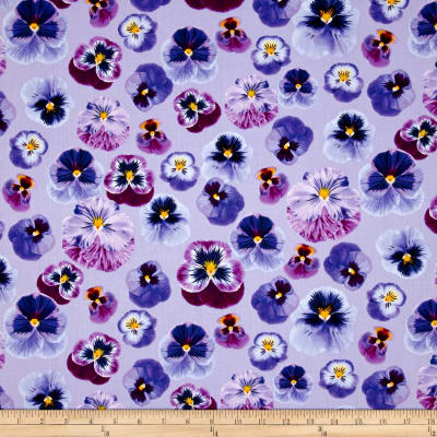 Kanvas Bloom With A View Pansy Persuasion Lilac