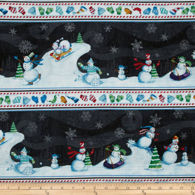 Snow Fun Border Stripe Multi