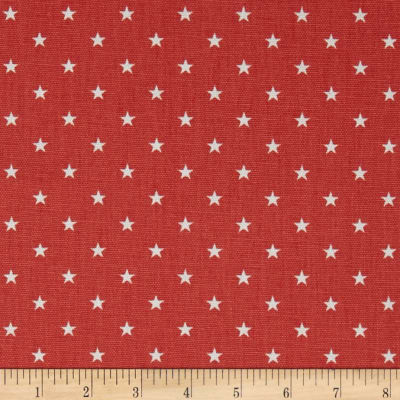 Premier Prints Mini Star Coral