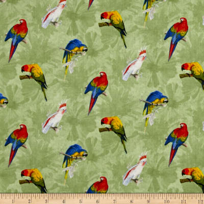 Rainforest Parrots Green