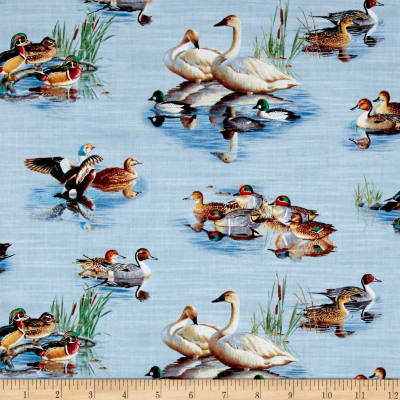 Waterfowl Scenic Blue