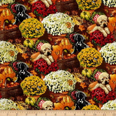 Autumn Puppies Floral Multi