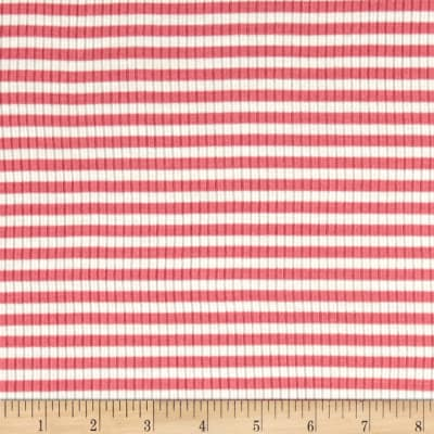 4X2 Rib Knit Small Stripe Ivory/Coral
