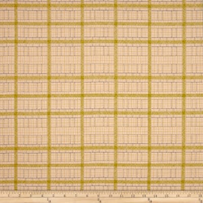 Kaufman Friedlander Box Stripe Peach