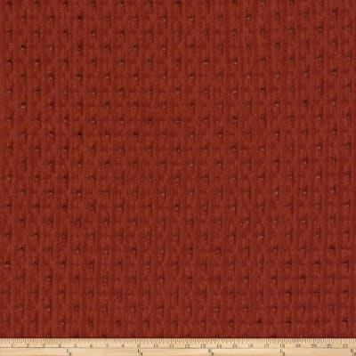 Fabricut Apropos Chenille Cranberry