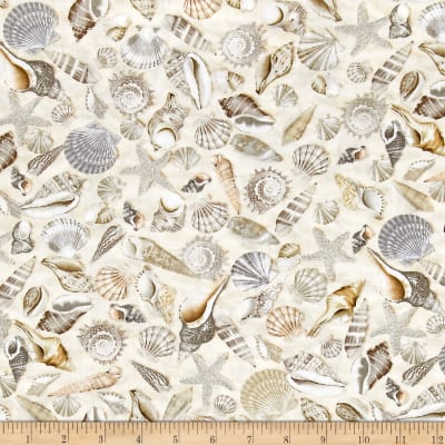 Timeless Treasures Beach Haven Shells Shells Discount