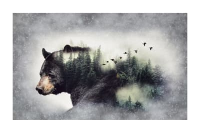 "Call Of The Wild Digital 27""Panel Bear Forest"