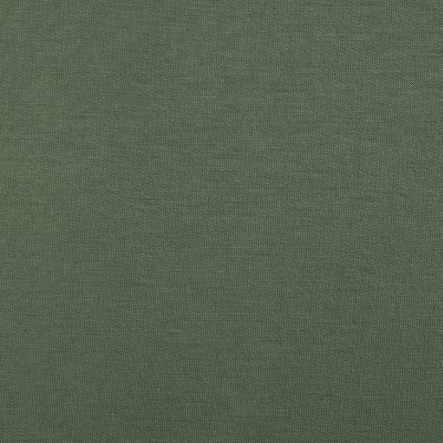 Telio Stretch Bamboo Rayon French Terry Knit Sage