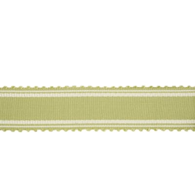 "Charlotte Moss 2.125"" Munich Trim Grass"