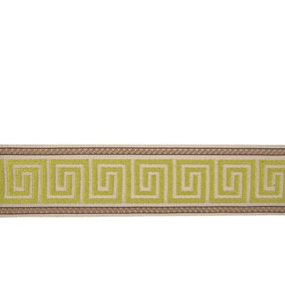 "Trend 2.25"" 03611 Trim Lime"