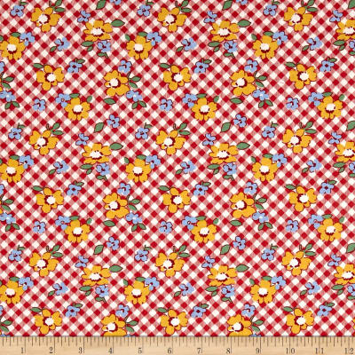 Chicken Scratch Gingham Floral Red