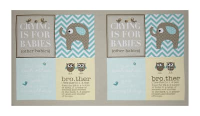 "Bro.ther Sis.ter Crying is for Babies 24"" Panel Aqua"