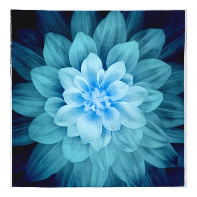 "Dream Big Digital 44"" Panel Floral Teal"