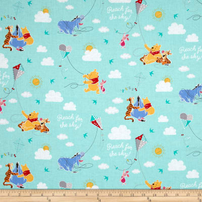 Disney Pooh Everyday A Good Kite Flying Day Teal Green