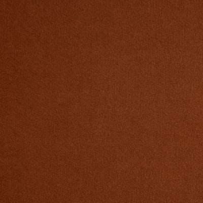 Fabric Merchants Double Brushed Solid Jersey Knit Tobacco