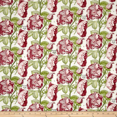 QT Fabrics Hatters Tea Party Antique Rose Antique Pink