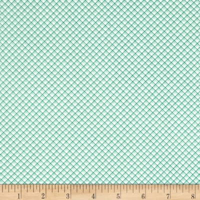 Riley Blake Sweet Prairie Gingham Mint