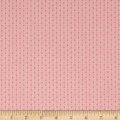 Madeline  C.1880-1904 Dot Stripe Raspberry