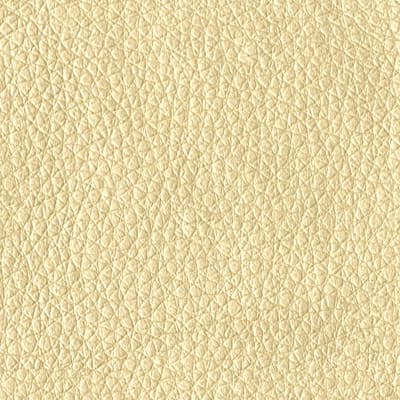 Abbey Shea Perkins Faux Leather Gold